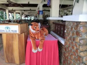 Tiger in Taman Negara