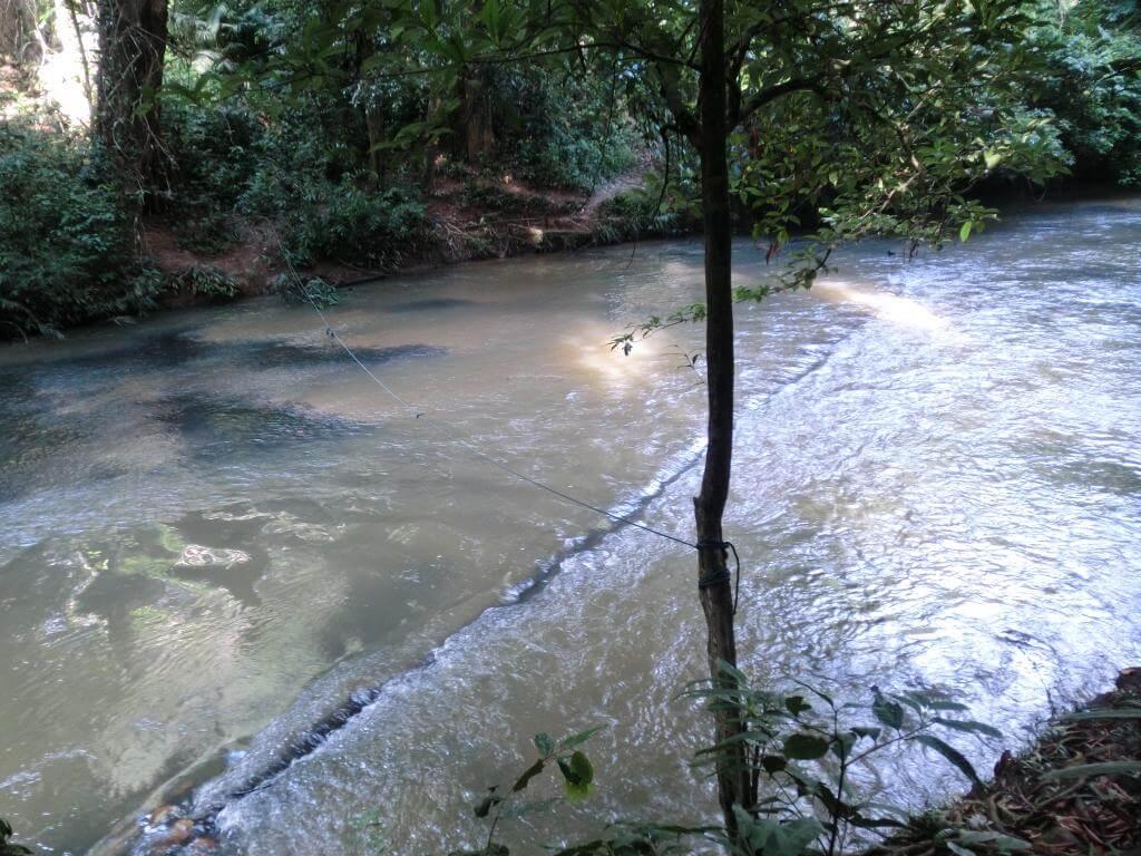 Flussüberquerung im Regenwald