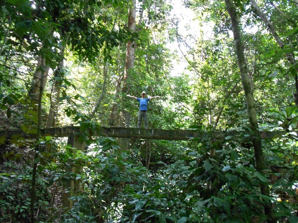 Alte Brücke in Taman Negara