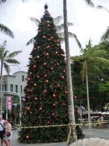 Weihnachten in Cairns