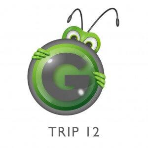 Grasshopper Travel Logo