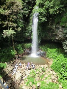 Wasserfall im Dorrigo Nationalpark